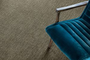 Blue chair on grey Carpet | Neils Floor Covering