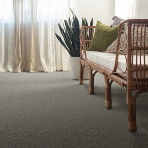 Grey Carpet | Neils Floor Covering